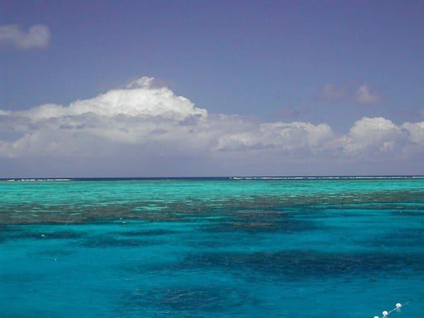 Australia Shore Excursion Questions Answered