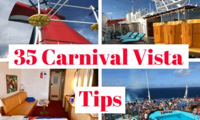carnival vista cruise tips