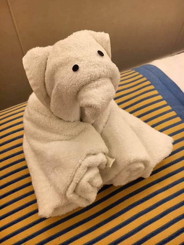 towel animal carnival sunshine