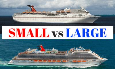small cruise ship large cruise ship