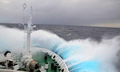 Avoiding Motion Sickness on a Cruise Ship