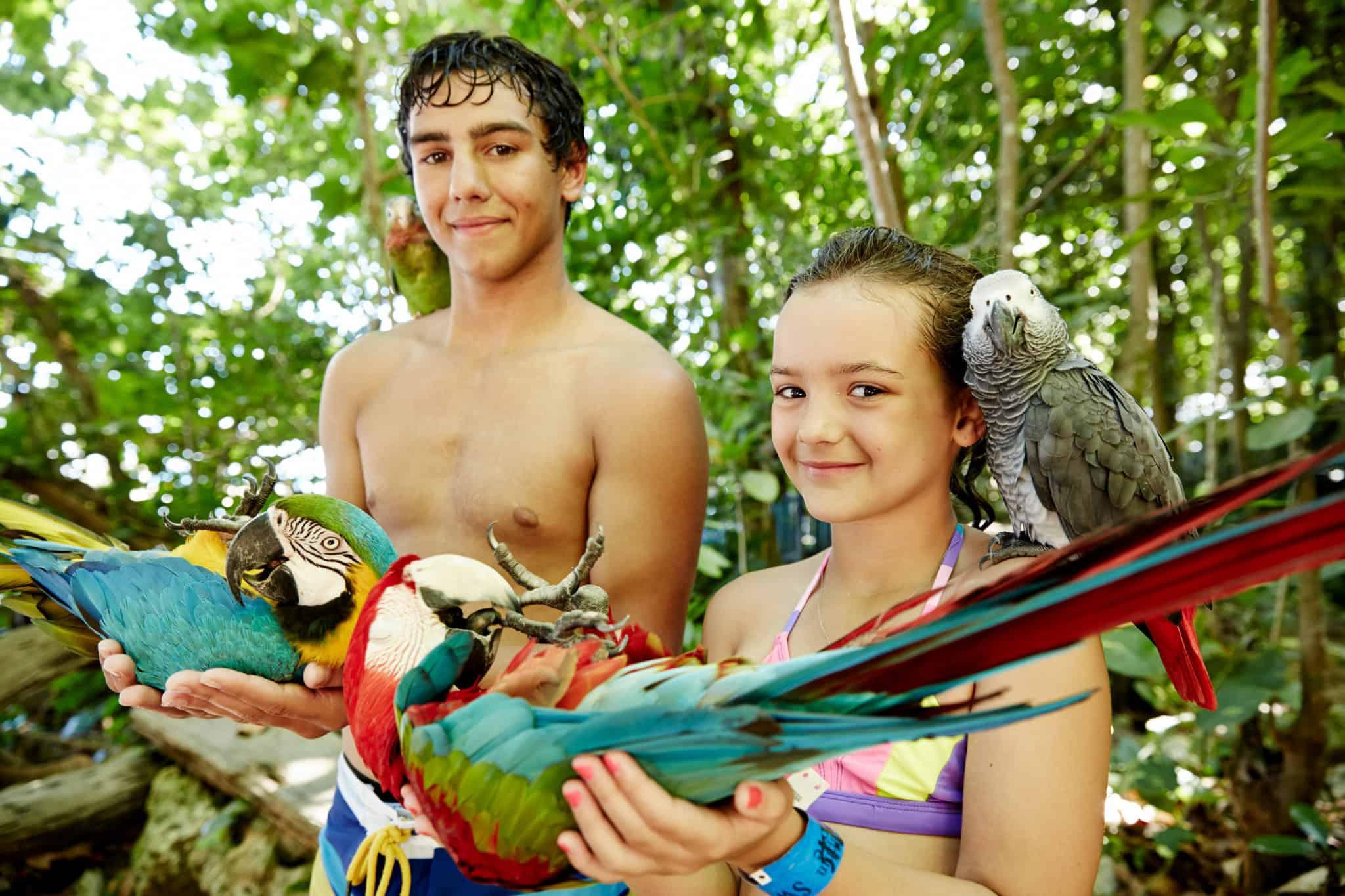kids holding macaws ocho rios jamaica princess
