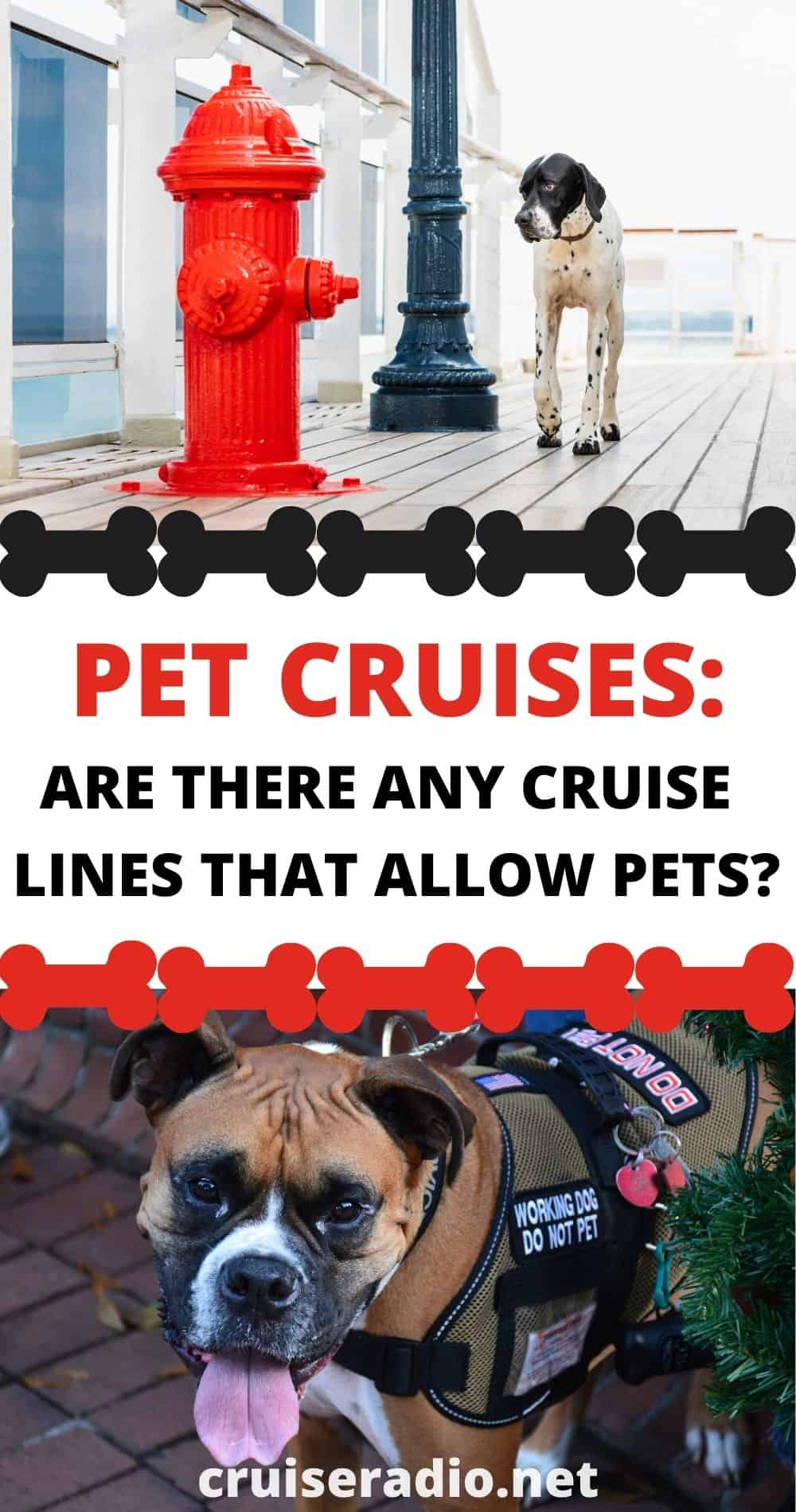 pet cruises lines that allow pets