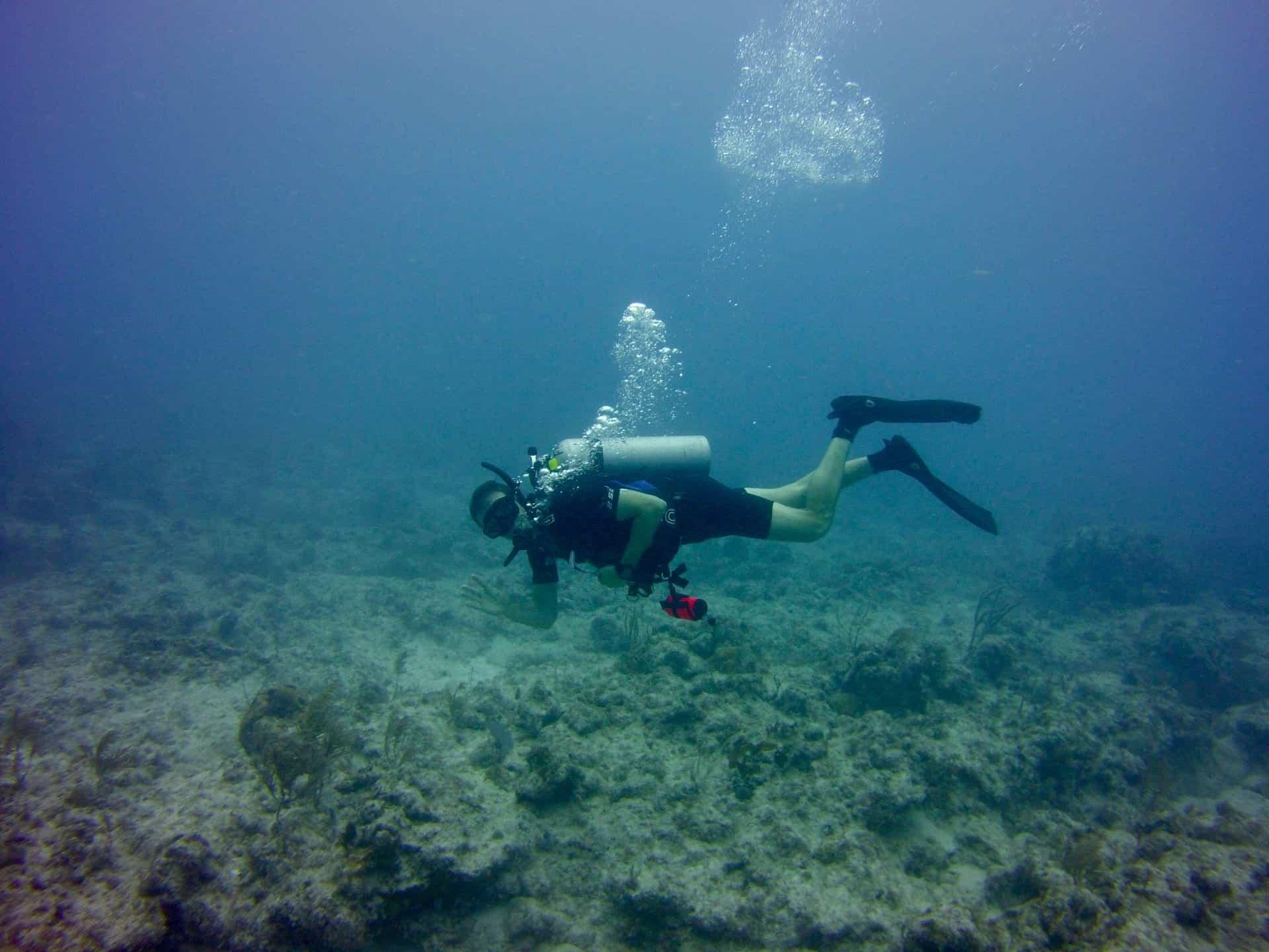 scuba diving florida barrier reef