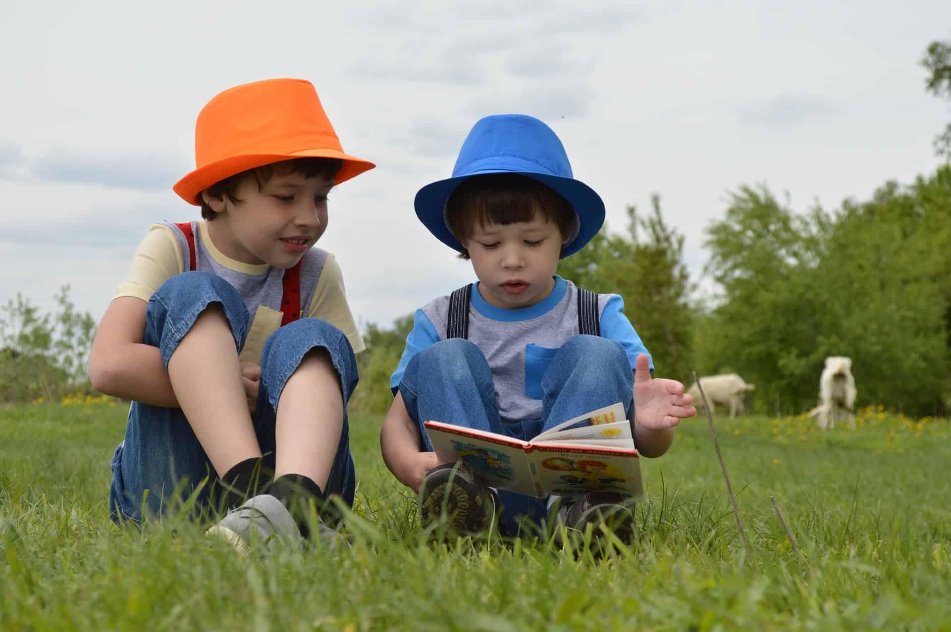 kids boys reading books pixabay