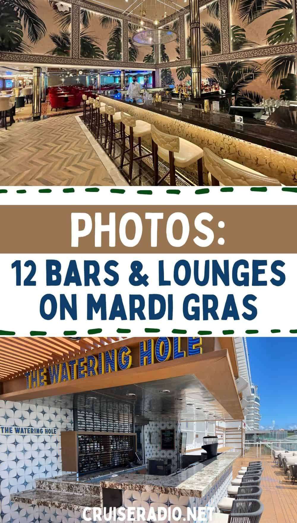 photos: 12 bars and lounges on mardi gras